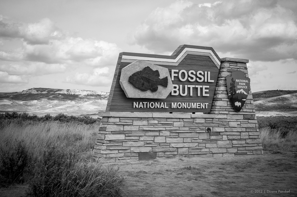 Fossil Butte National Monument Photo | Ricoh GXR-M, Leica Summicron 35mm v2