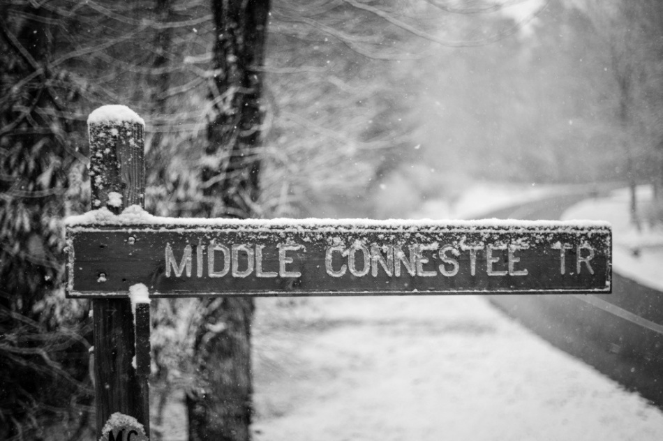 Middle Connestee Sign Post