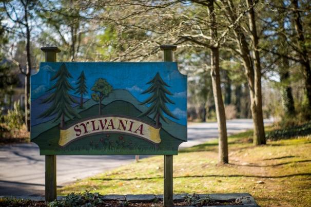 Sylvania Neighborhood
