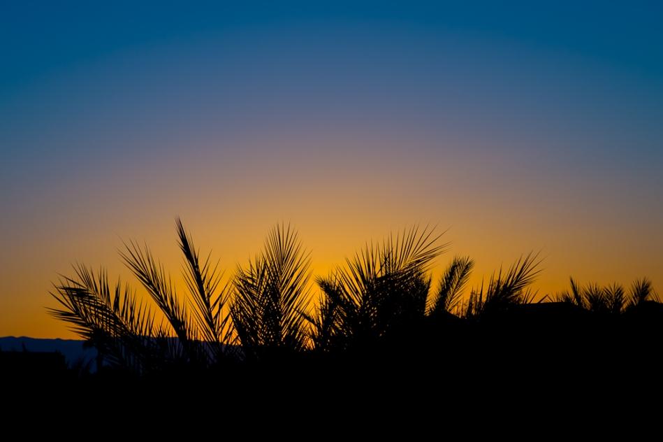 Palm Springs Sunrise