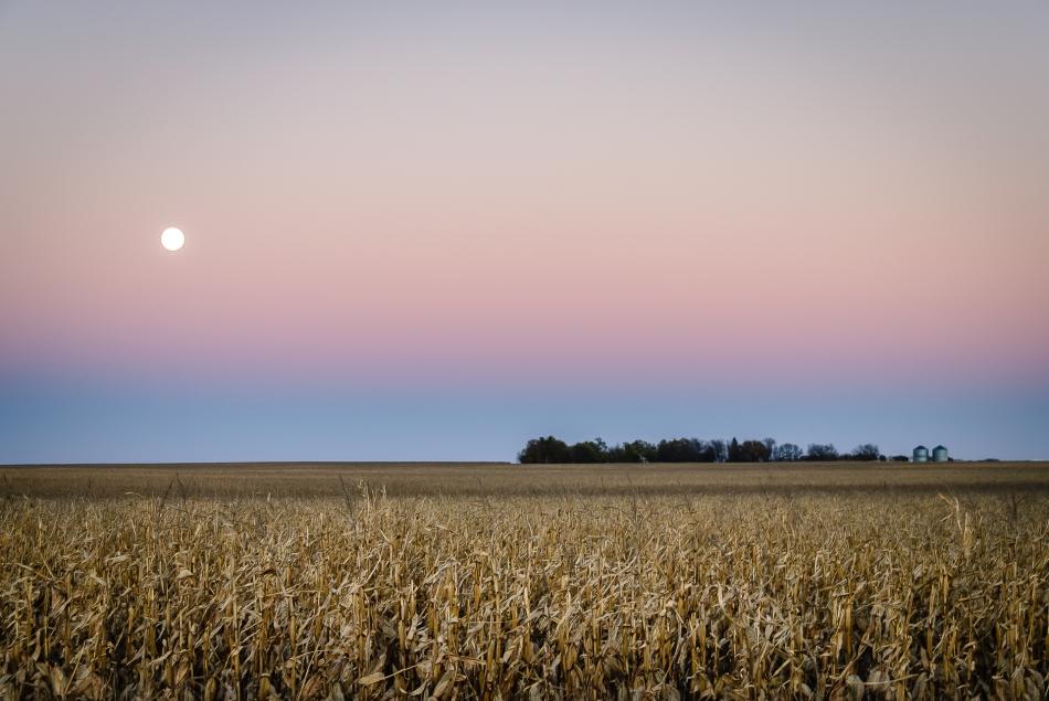 Moon Rise Polo South Dakota