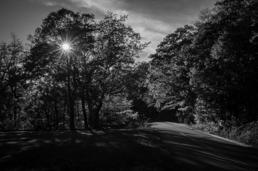 20141023-172354-©DuaneLPandorf-L1032879-2
