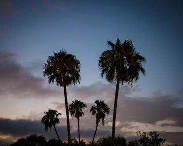 Sunset, Leica M-E, 35mm Summilux